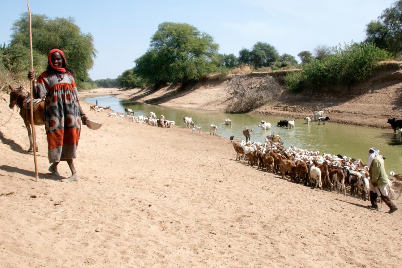 Cette rivière représente la principale source d'eau utilisée par la population autour du village de Siebe.  © Abdoulaye Barry