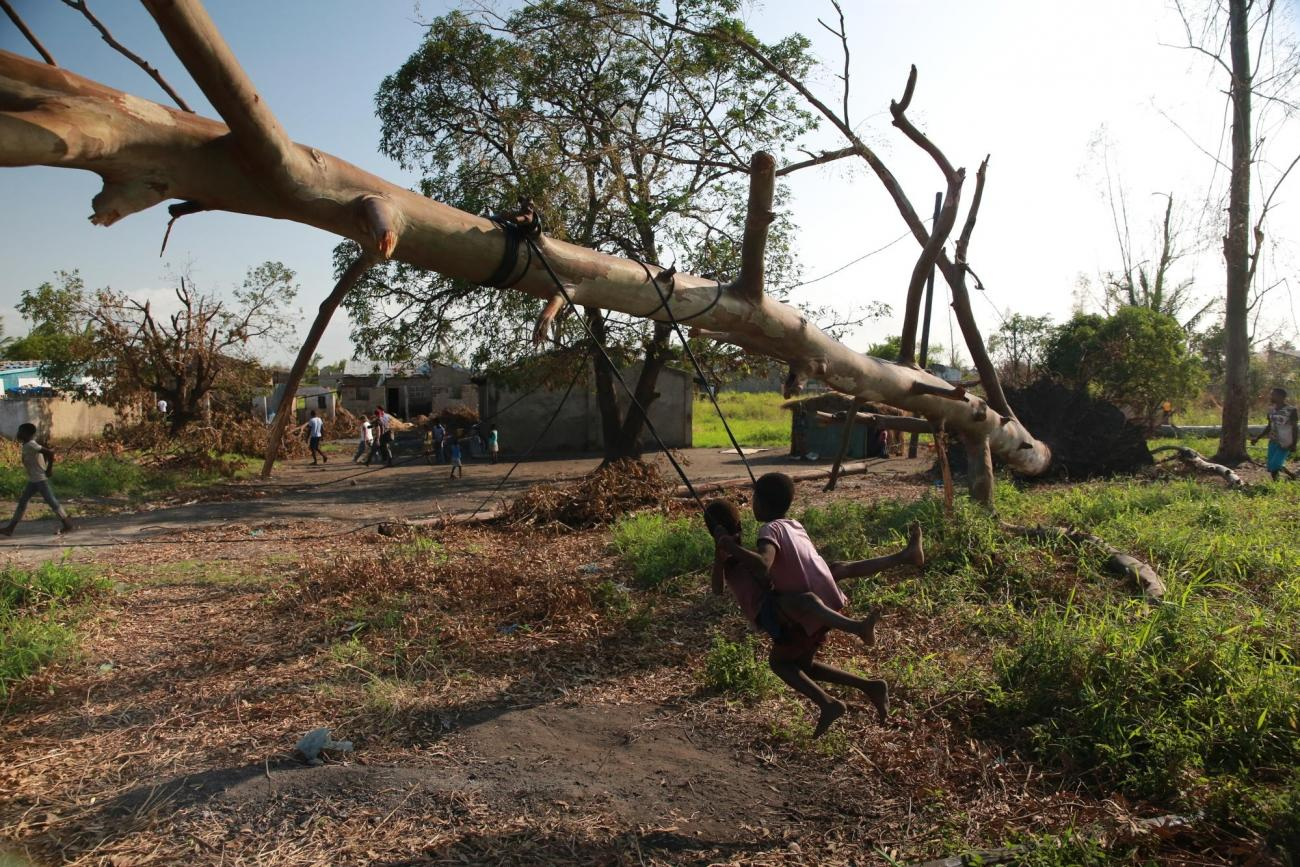 Des enfants jouent sur une balançoire accrochée à un arbre tombélors du passage du cyclone. Mozambique. 2019.  © Mohammad Ghannam/MSF
