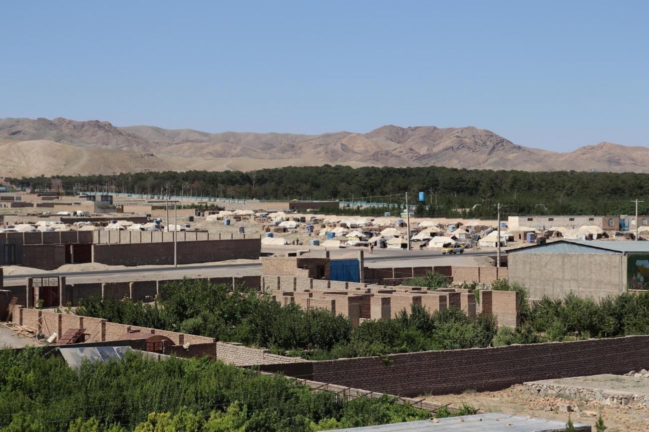 Les camps de personnes déplacées, dans la banlieue de la ville de Herat.  © Noor Ahmad Saleem/MSF