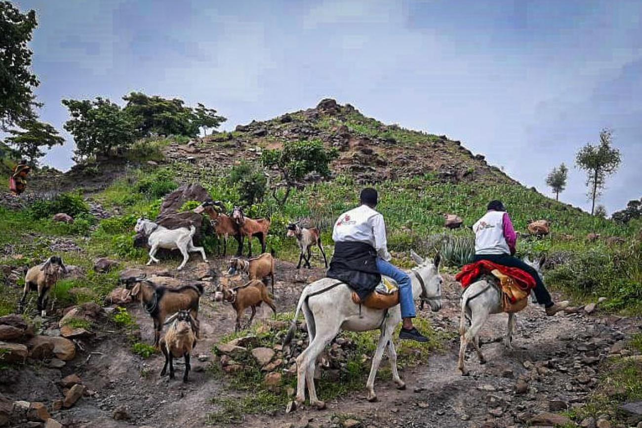 L'équipe MSF voyage à dos d'âne de Rokero à Umo.  © MSF