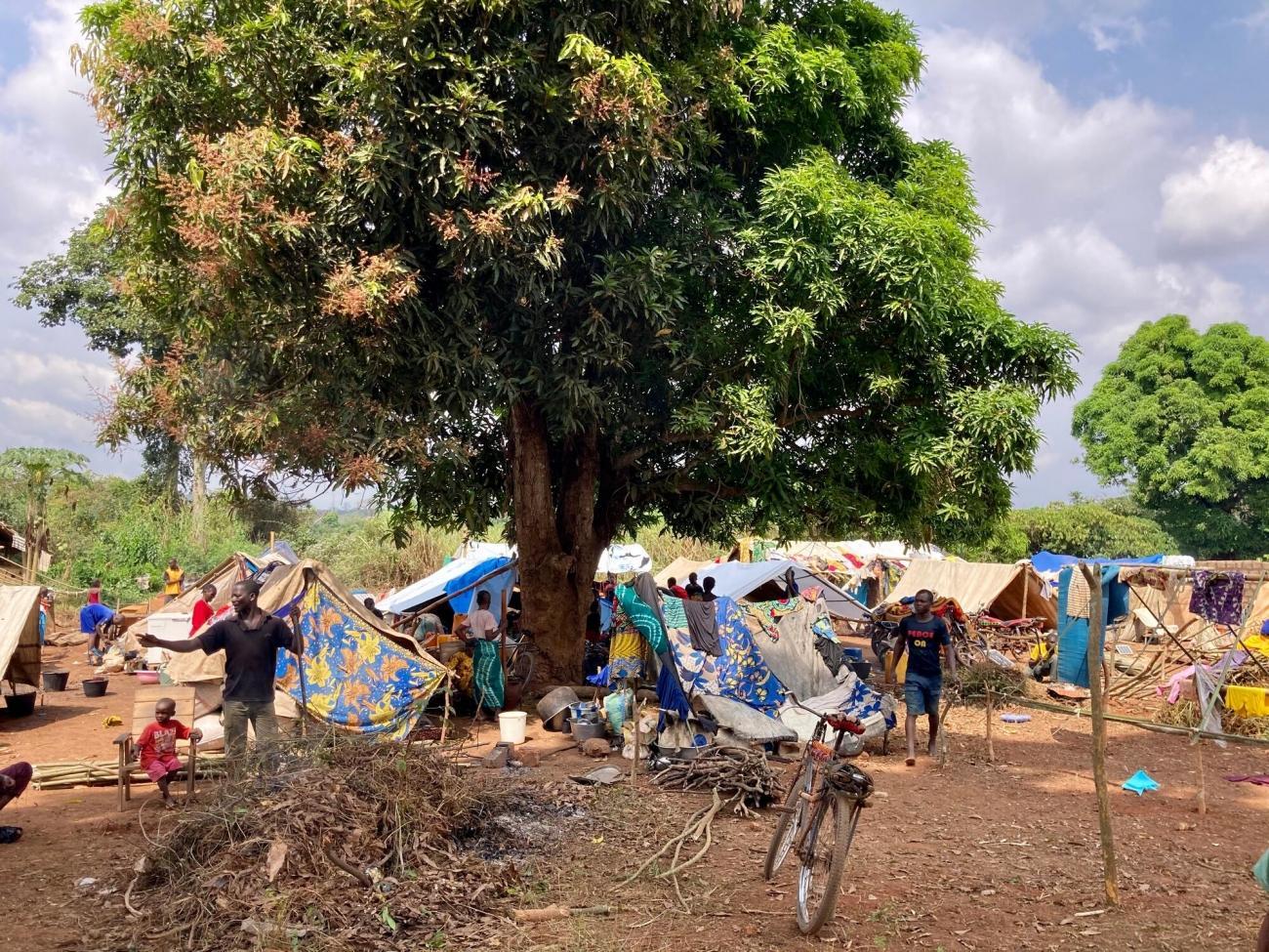 Vue de l'intérieur de la ville de Ndu, dans le nord de la RDC, où des milliers de Centrafricains se sont réfugiés suite à l'attaque d'un groupe armé non étatique sur Bangassou le 3 janvier.  © Dale Koninckx/MSF