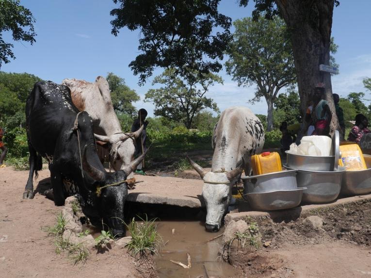 Un village de la région de Paoua. République centrafricaine. 2018.  © MSF/Anaïs Deprade