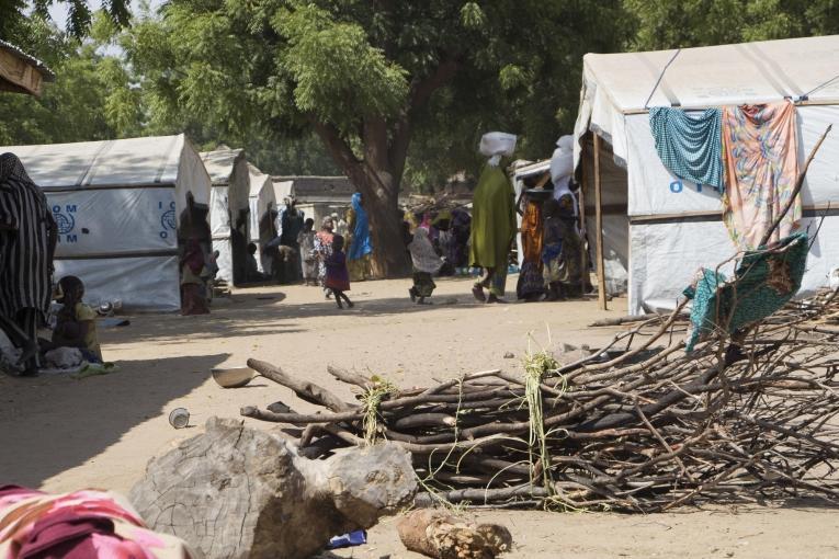 Plus de 29 000 personnes vivent dans le camp de personnes déplacées sur un total de 60 000 personnes déplacées dans la ville de Bama. Certains d'entre eux vivent ici depuis près de deux ans et sont totalement dépendants de l'aide humanitaire pour leur survie. Sortir du camp pour cultiver la terre est interdit et peutêtre très dangereux. Nigeria. 2018.  © Natacha Buhler/MSF