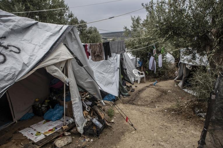 Olive grove, où se sont installées de nombreuses familles, se trouve à proximité du camp de Moria. 30 000 personnes y vivent, alors que la capacité d'accueil du camp est de 3 000. Lesbos, octobre 2019.  © Anna Pantelia/MSF