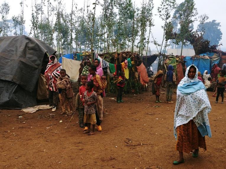 Des abris temporaires dans un camp de déplacés à Gedeb, dans la zone de Gedeo, en Ethiopie.  © Markus Boening/MSF