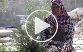 Cisjordanie : conséquences psychologiques d'une violence physique