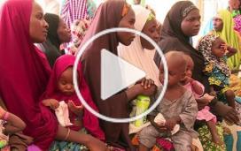 Nigeria : pour les déplacés de Maiduguri, la situation se détériore