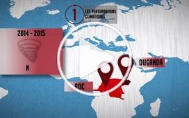 Paludisme : cinq éléments clés pour lutter contre la maladie