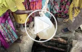 Journal de décembre : Kenya, Irak, Tchad, Syrie, Yémen, faux médicaments
